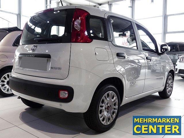 Fiat Panda Urban 1.0 Mild Hybrid City Paket Flex light