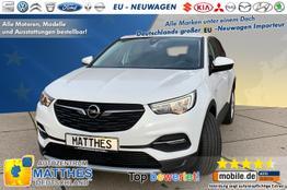 Opel Grandland X - Design Line :SOFORT  LED  Navi-Funktion   WinterPak  Klimaauto Mit neuem EURO6d-TEMP Motor!!!