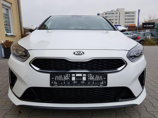 Kia / ProCeed / Weiß / GT Line  /  / DSG
