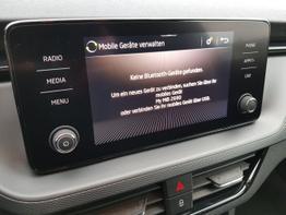 Skoda / Kamiq / Grau / Ambition  /  / Klimaautomatik, PDC ,DSG  Kamera, Sitzheizung