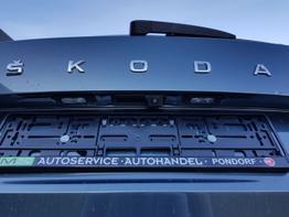 Skoda / Kamiq / Grau / Skoda Kamiq 1.0 Style /  / Anhängerkupplung, Einparkhilfe, Rückfahrkamera, Sitzheizung