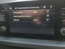 Skoda / Kamiq / Blau / Ambition  /  / Klimaautomatik, ACC  DSG,KAMERA